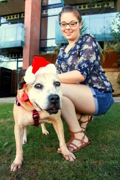12.2.14 - 13-Year-Old Dog at Shelter for 1000 Days FINALLY Gets a Home3