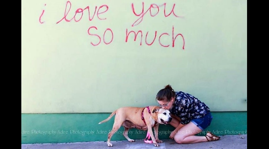 13-Year-Old Dog at Shelter for 1000 Days FINALLY Gets a Home