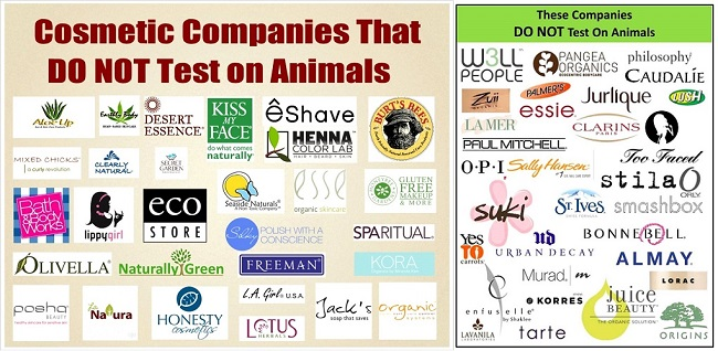 Companies That Test On Dogs And Cats