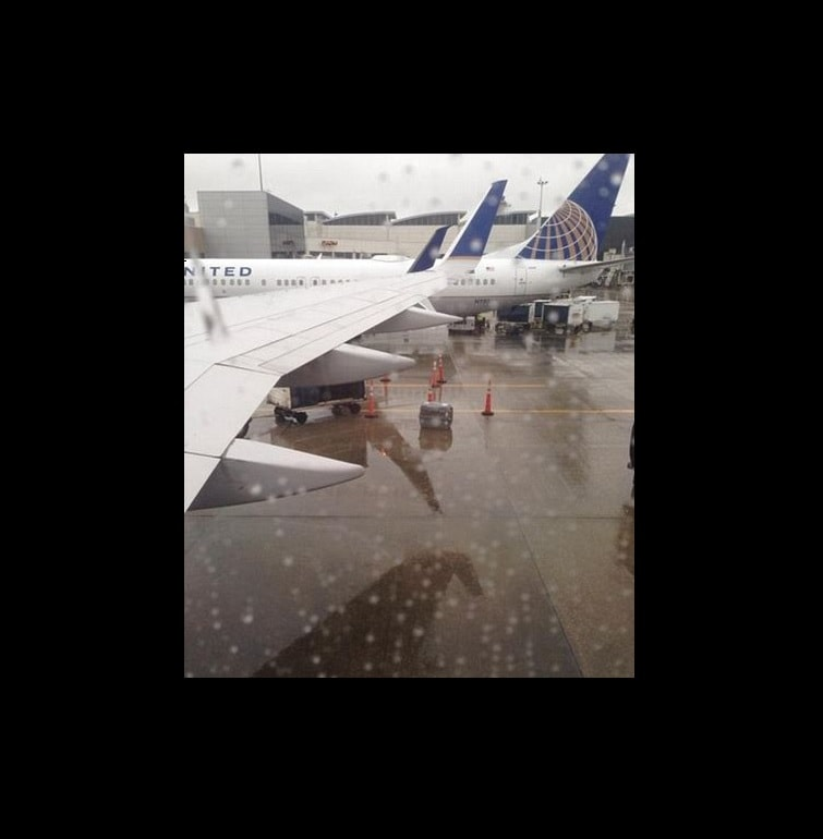 United Airlines Gets Flack for Dog left in rain on Tarmac