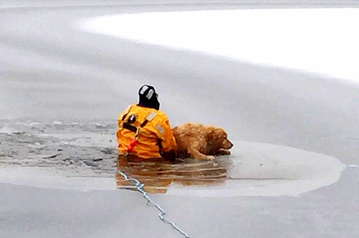 12.4.14 - Dog Receives Heroic Rescue After Falling Through Ice