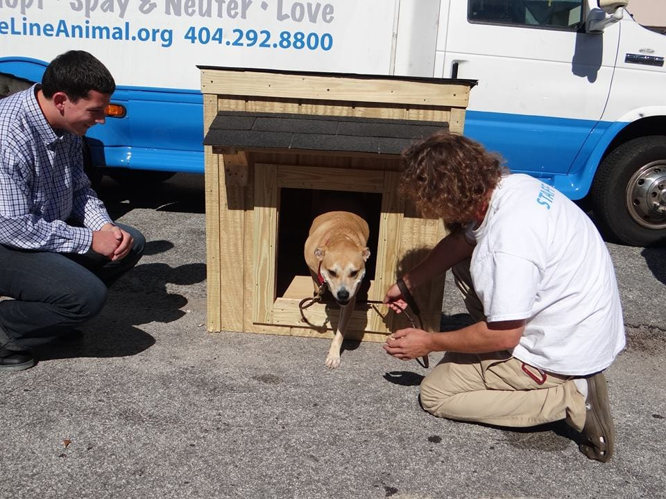 Five Lucky Dogs Get Dog Houses before Christmas
