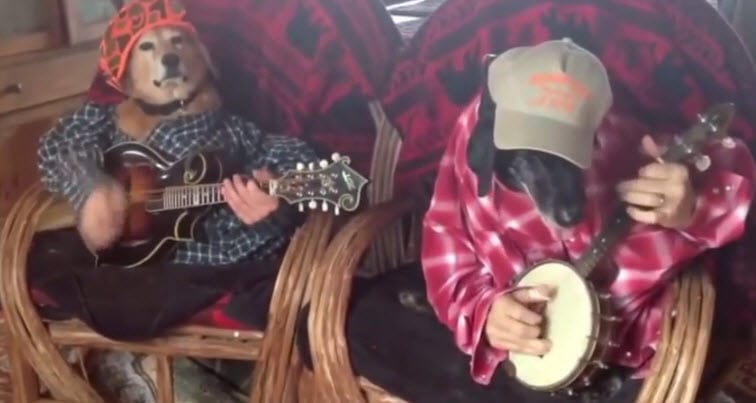 "Dogs ""Play"" Banjos"