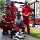 Firefighter Fired After Abusing Community Dog