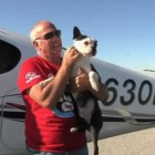 Florida Man Flies 3,000th Rescue Animal in Plane