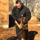 Dog Hugs Men Who Rescue Her from Six-Year Tether