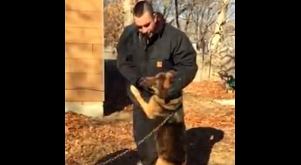 She jumped up on her heroes to thank them before excitedly leading them off the property.