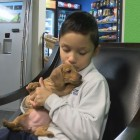 Woman Donates Puppy to Boy that Lost his in Fire