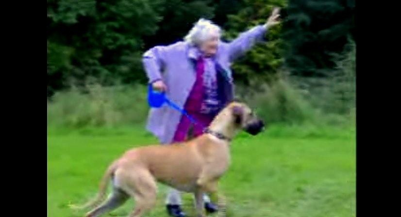 Heart bursting alert: Do I have a dog? Grandma with