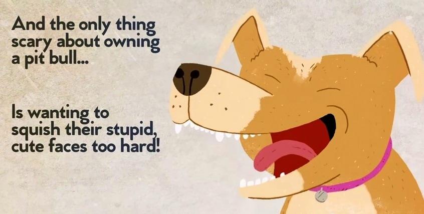 myths about pitbulls
