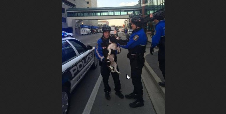 Bike Patrol Officers Reunite Missing Dog with Family