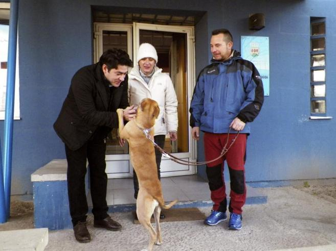 Spain's Nurse and First Ebola Survivor Adopts New Pet