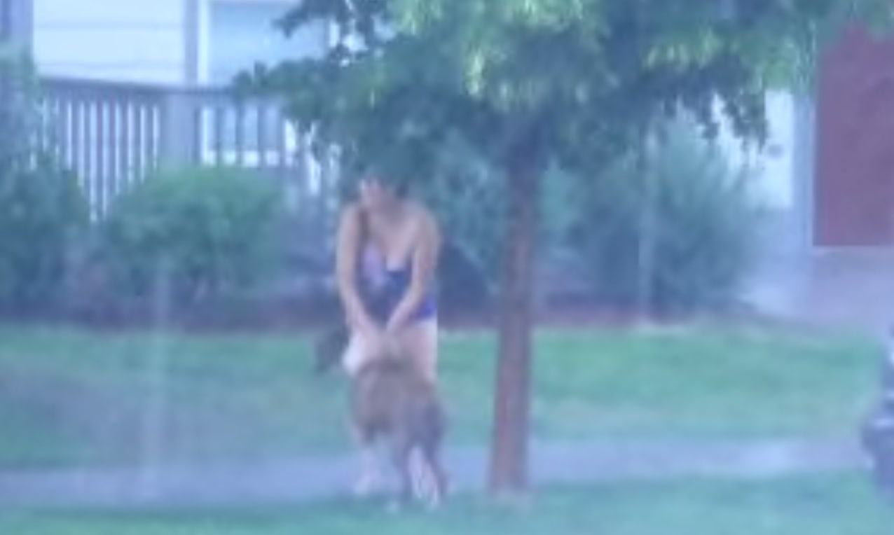 Dog Tied to Tree During Massive Storm Rescued