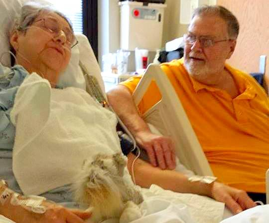 2.11.15 - Missing Dog Turns Up at Hospital to Be With Sick Owner2