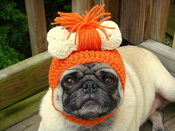 2.26.15 - Dogs Who Are NOT Happy About Their Hats16