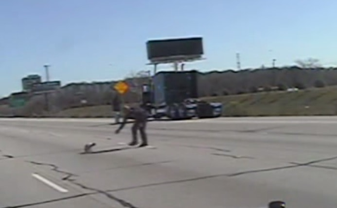 Police in Ft. Worth Rescue Stray Dog from Highway