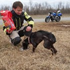 Motorcyclist Rescues Abused Dog Abandoned in Crate