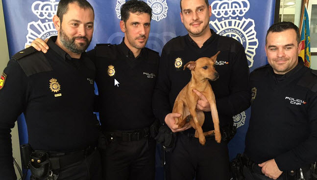 Police Officer Adopts Dog He Pulled from Abusive Home