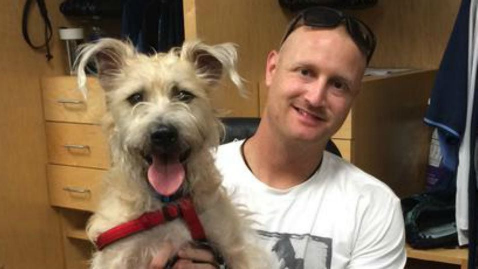 Stray Finds Home with Tampa Bay Rays Pitcher Alex Cobb