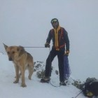 Mountain Climber Rescuers Help Lost Dog Get Back Home