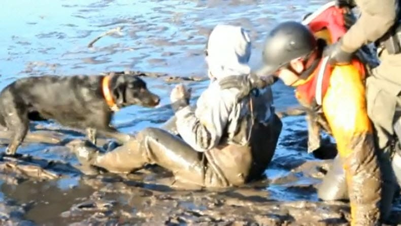 Dog Saves Owner's from Dying Stuck in Mud