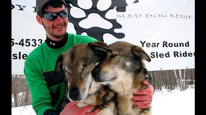Blind Husky Needs a Home with His Guide Brother