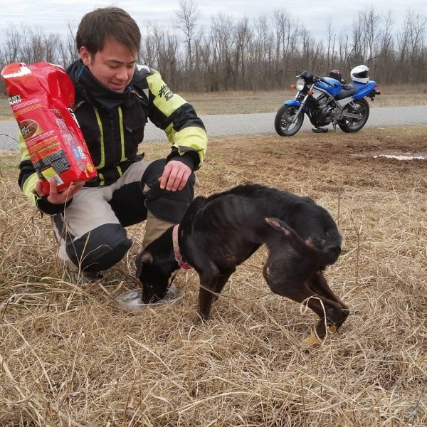 Father and Son on Motorcycles Rescue Dog