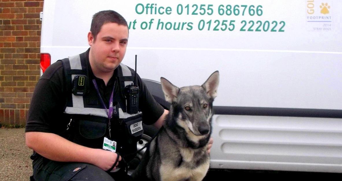 Stolen Dog Returned Home Because of Seizure