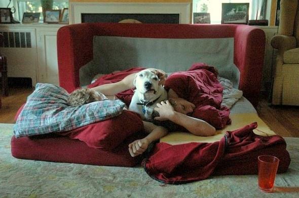 3.5.15 - Beloved Rescue Dog Oogy Has Died2