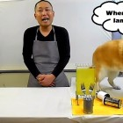 "Dog ""Gordon Ramsays"" Food Demonstration"