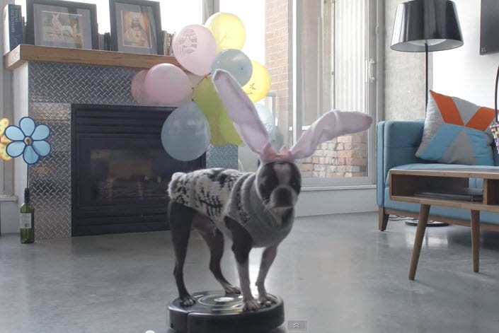 The Easter Doggy Has No Need to Hop!