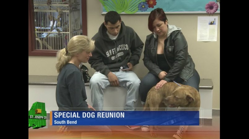 Hit-and-Run Dog Reunites with Family After Life Saving Surgery