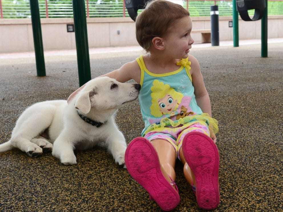 Toddler and Puppy Both Born with Birth Defect Become Best Friends