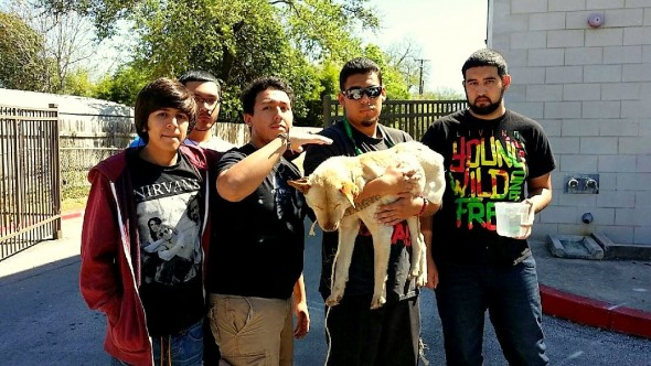 4.10.15 - Teenagers Save the Life of an Abandoned, Dying Dog1