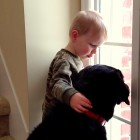 4.15.15 - Having Dogs Makes Children Empathetic2