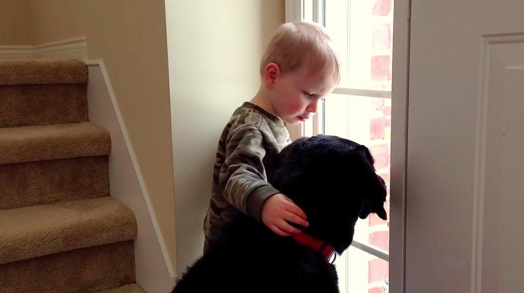 Want to Raise Empathetic Kids?  Get Them a Dog.
