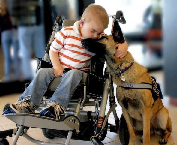 4.15.15 - Having Dogs Makes Children Empathetic5