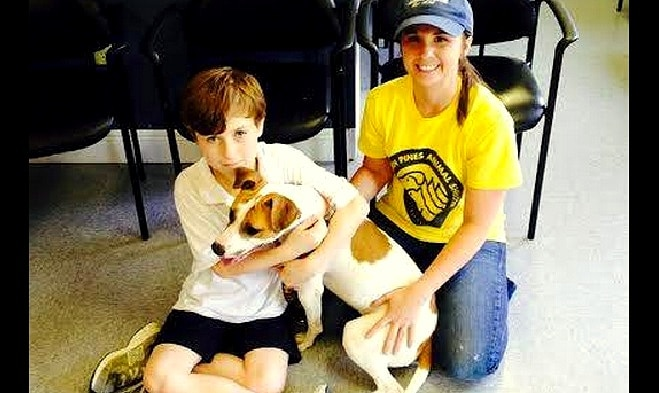 11-Year-Old Boy Uses His Allowance to Save Shelter Animals