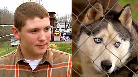 4.23.15 - Teen and His Dog Save Girl from Rabid Fox1