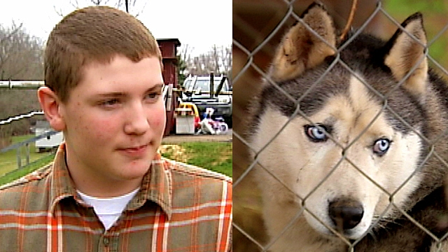 Teen and His Dog Save Little Girl from Rabid Fox