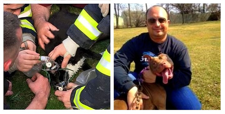 Animal Rescuer Turns Personal Tragedy into an Amazing Cause