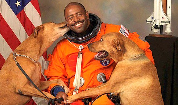 Astronaut Sneaks Dogs Into Official Photo