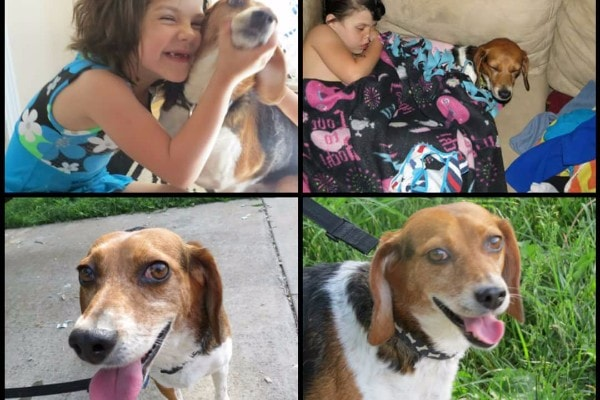 Utah Girl Reunited With Dog After Two Years
