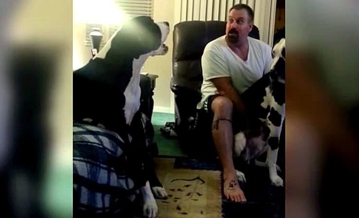 Jealous Dog Demands Bro-Time With Dad