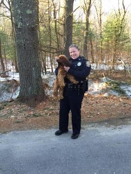4.6.15 - dog rescued woods END