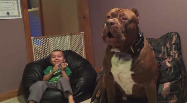 Hulk Sings The Blues With His Human Brother On Harmonica