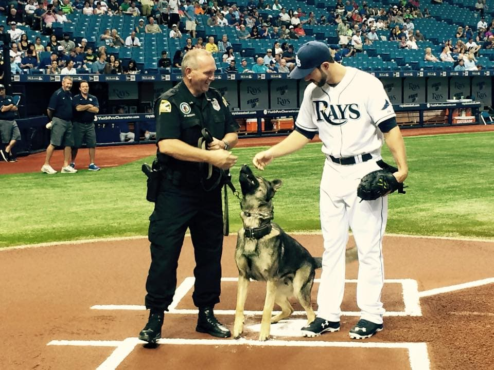 Police Dog Throws First Pitch at Baseball Game