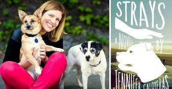 Strays – Book Review, Author Interview & Free Book Giveaway!