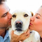 5.16.15 - 10 Things You Should Know About Dating a Dog Lover6