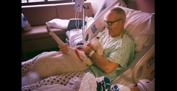 Trucker Gets Dog Back After Surviving a Medical Emergency